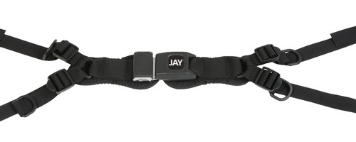 4-Point Padded Pelvic Belt with Push Button Buckle